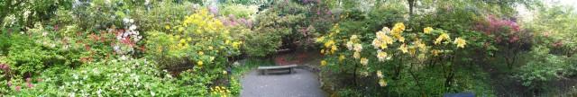butchart_gardens_1